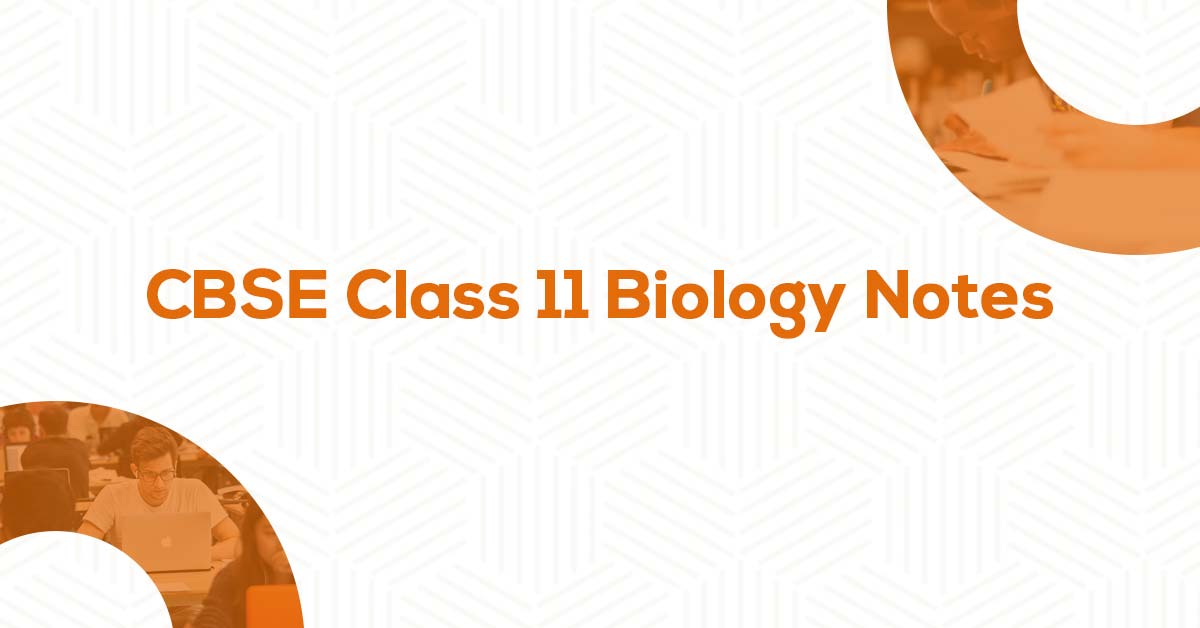 Class 11 Biology Notes